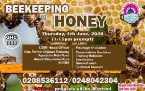 Bee Keeping For Honey